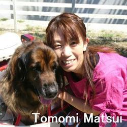 lgi_matsui.jpg