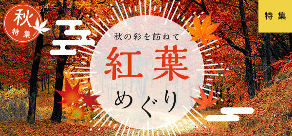 秋/紅葉めぐり
