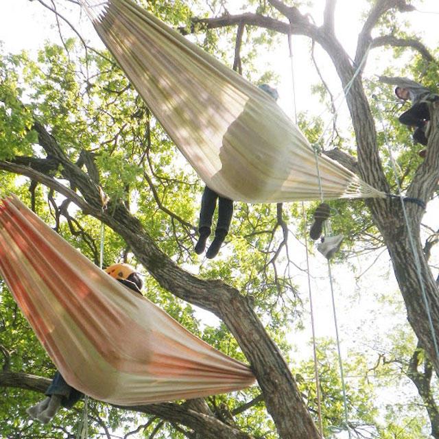 木登りツアー ツリーカフェ