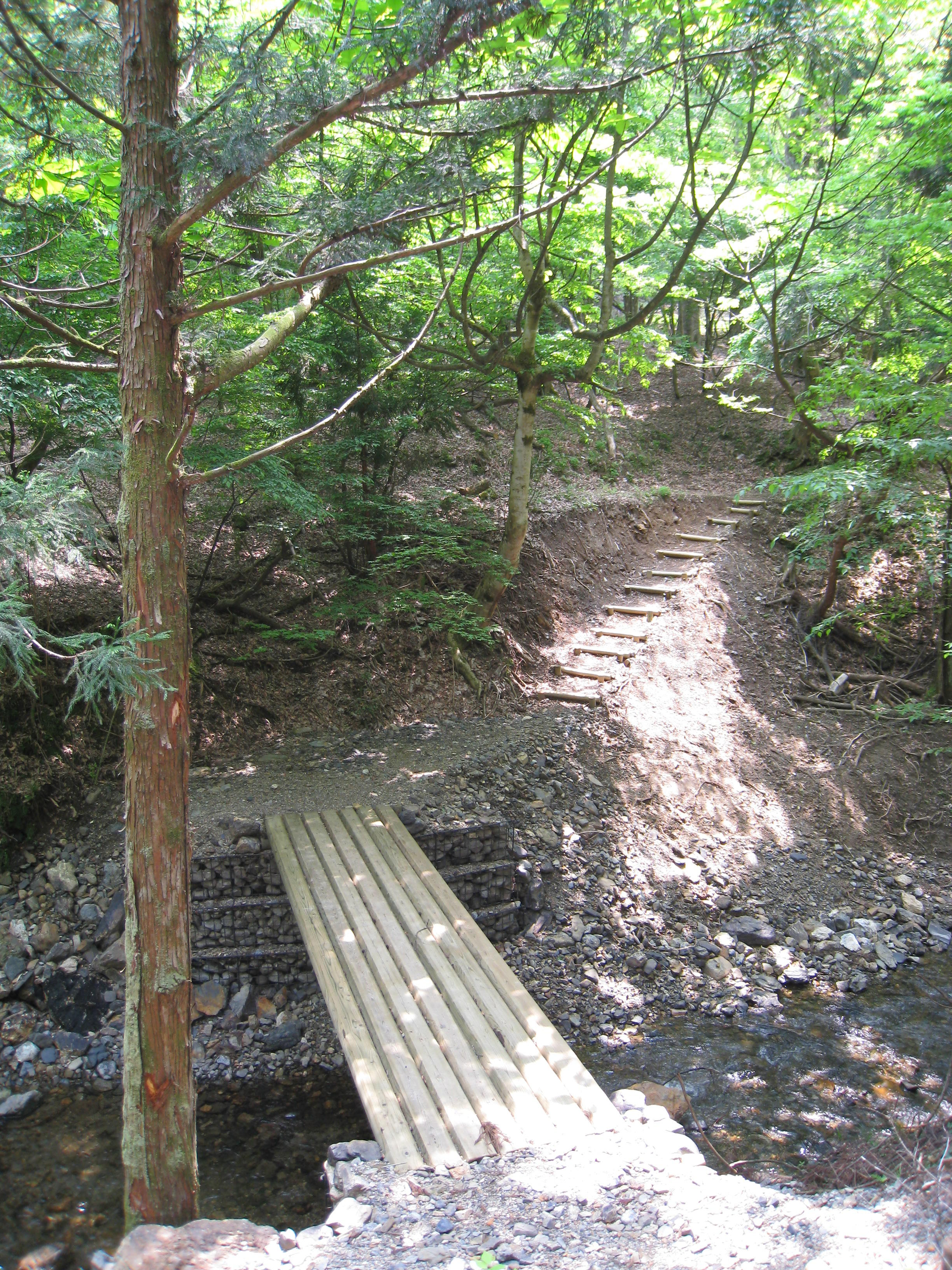 森林公園くつきの森