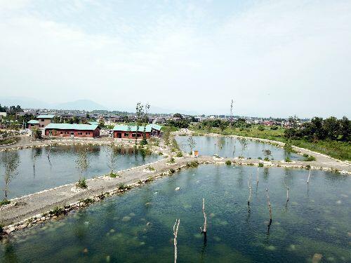 フィッシングパーク 高島の泉