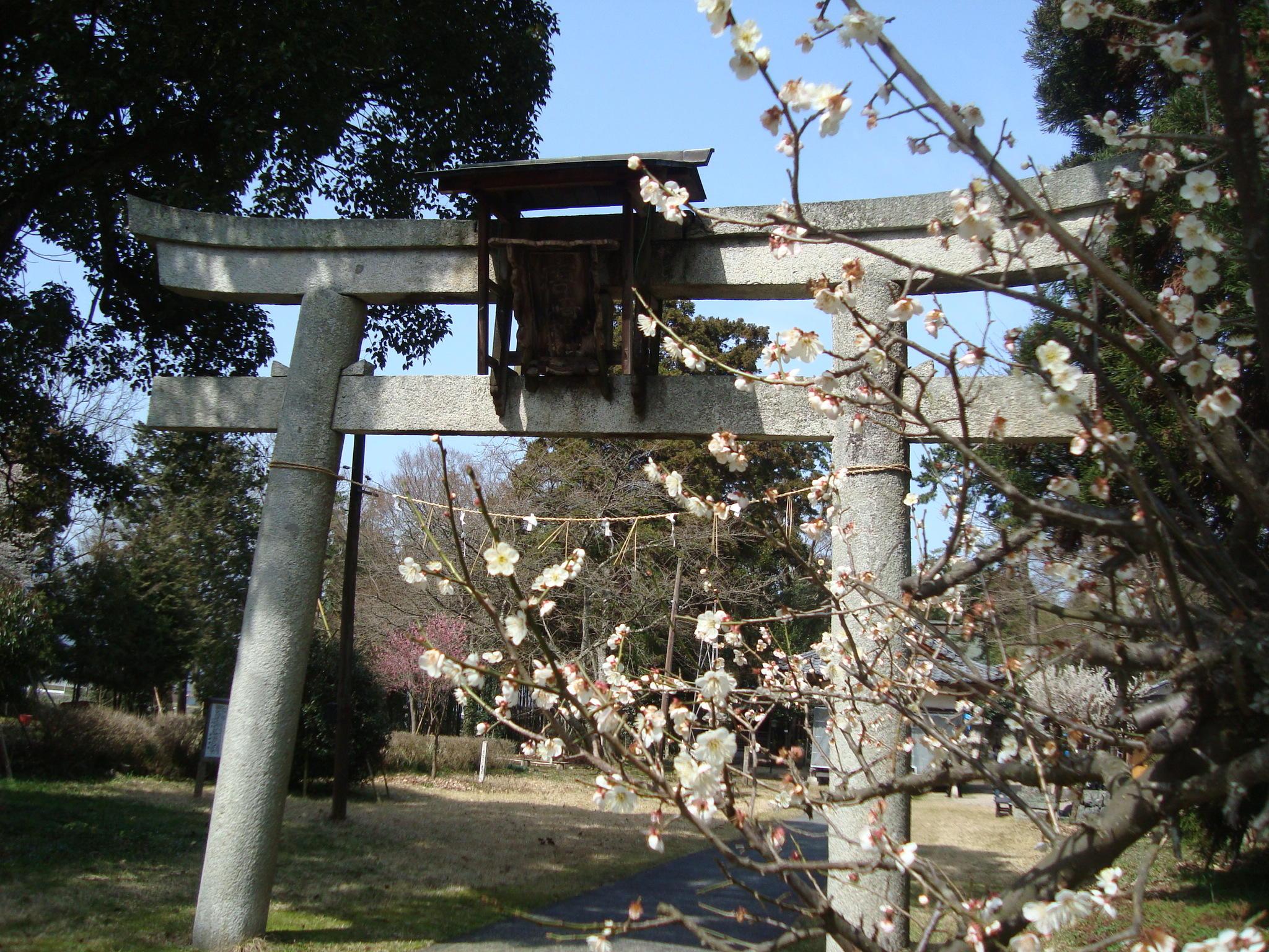 川裾宮・唐﨑神社