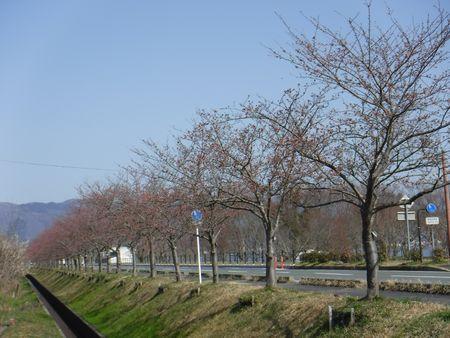 風車街道.JPG