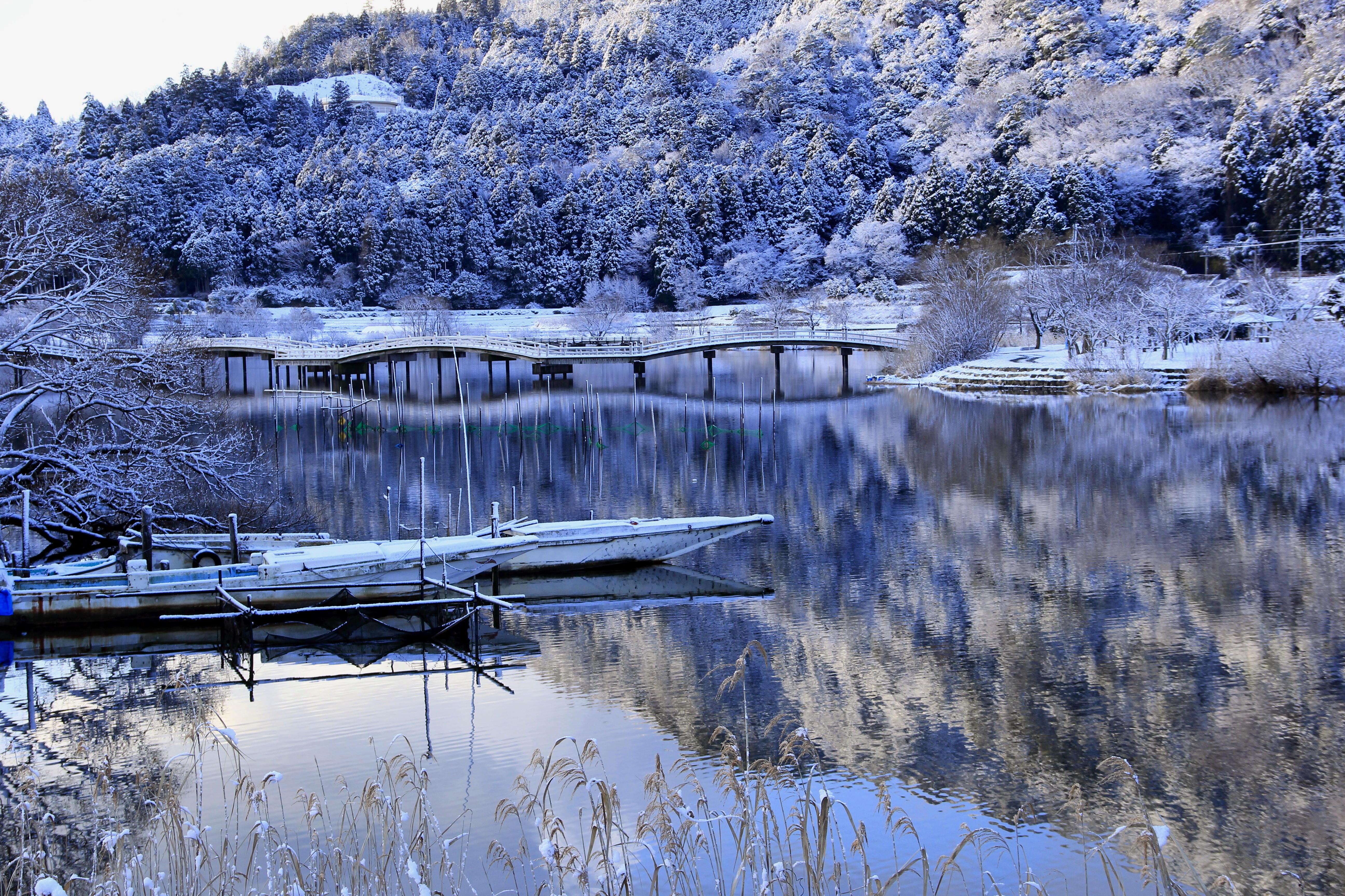 冬の乙女ヶ池