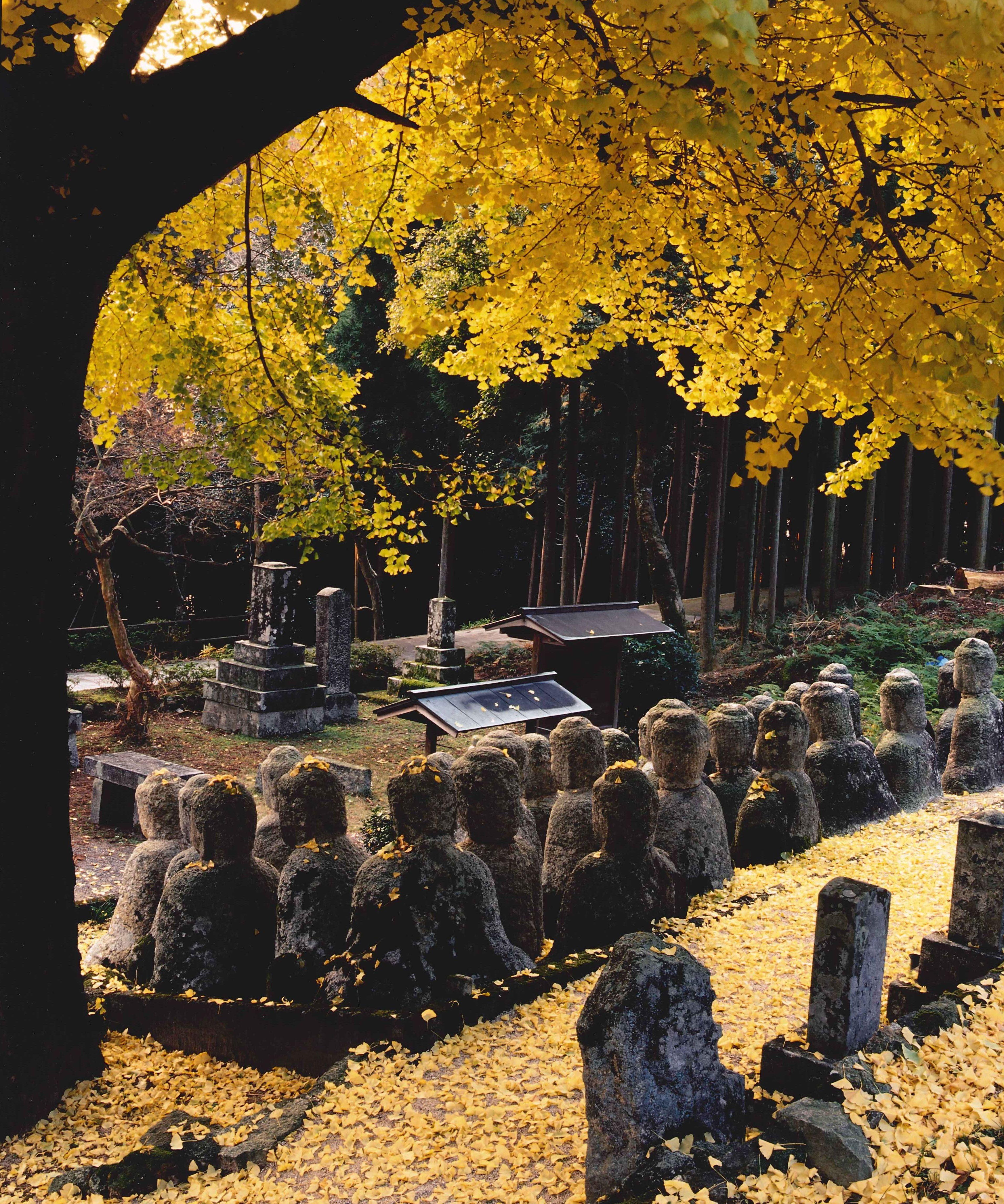 黄葉と石仏
