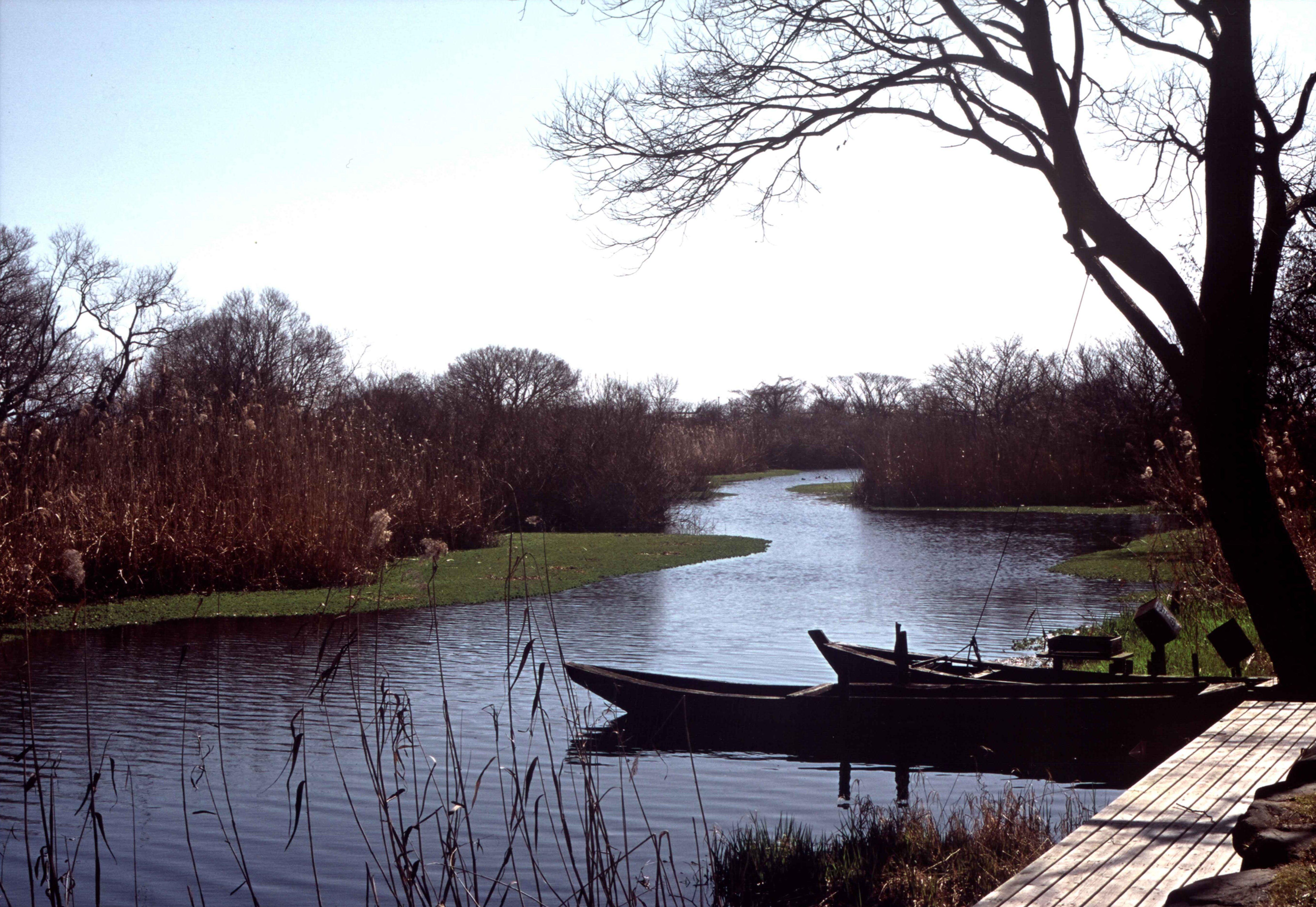 小春日和の舟溜り