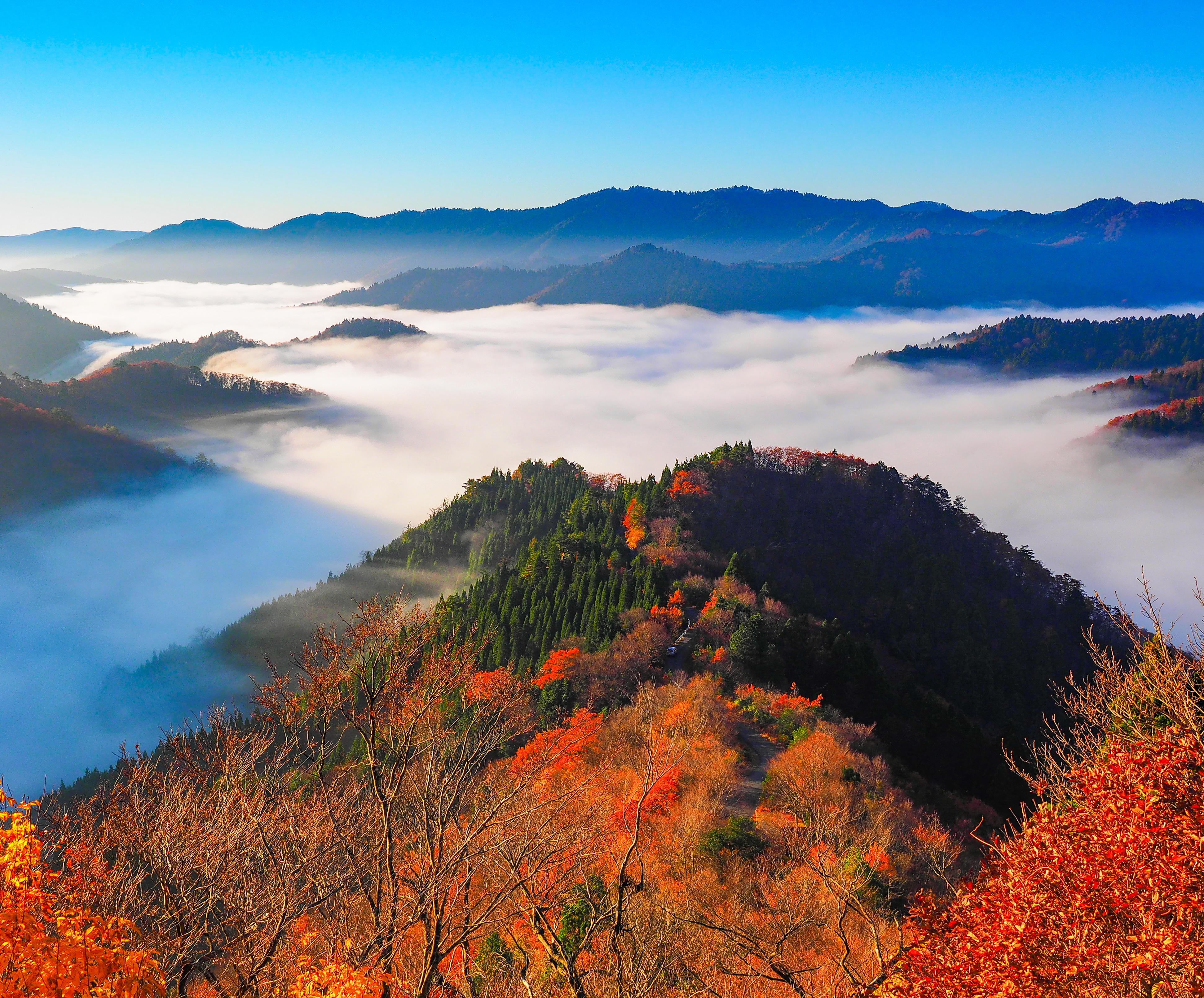 晩秋小入谷の紅葉と雲海