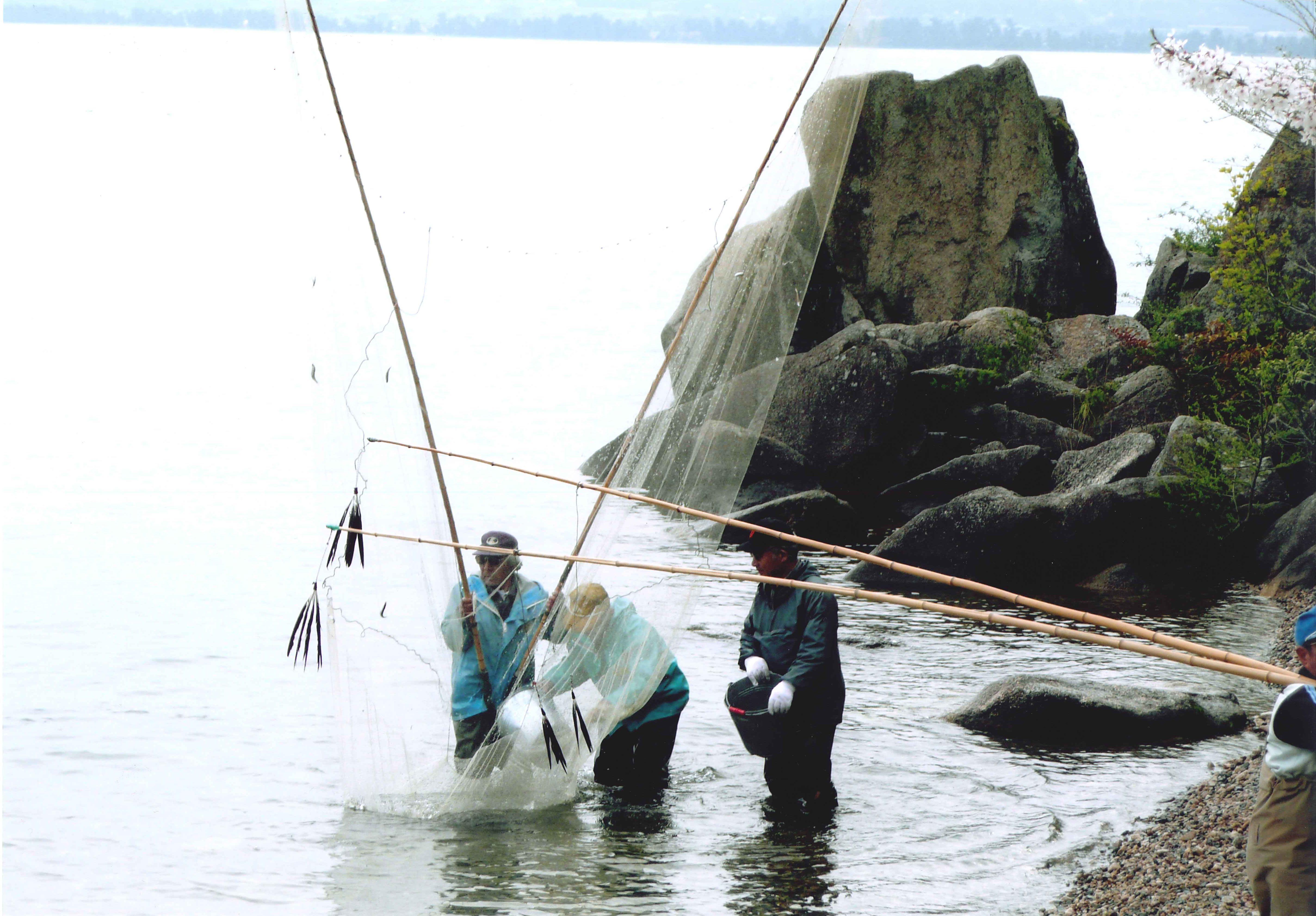おいさで漁