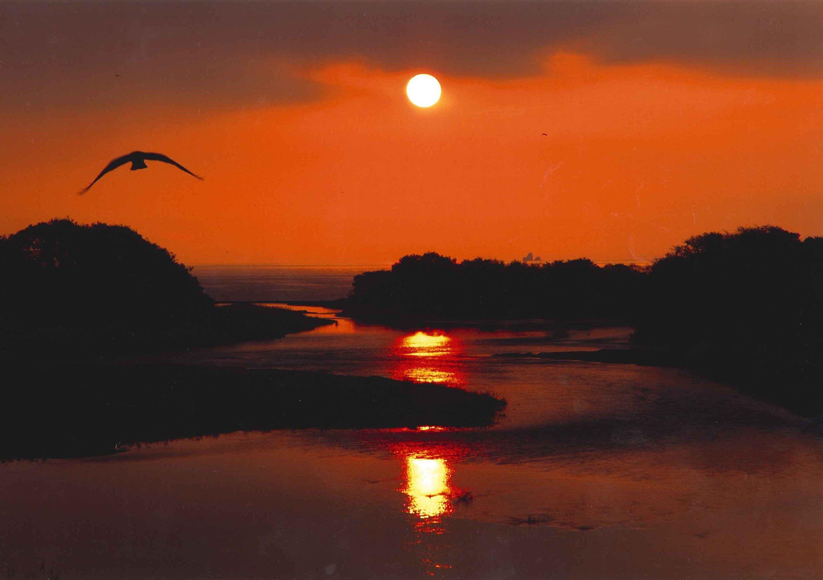 安曇川の朝