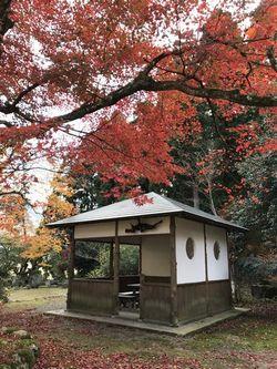 koushoji1113-4.JPG